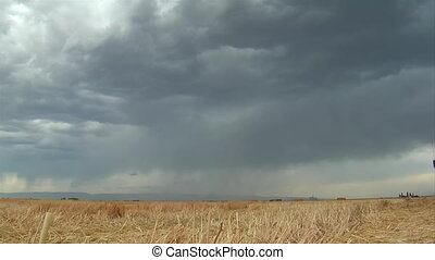 stormy skies and lightning over wheat field