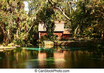 Mill House in Forest - An old mill house nested in the Ocala...