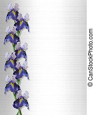 Iris Border on Satin invitation