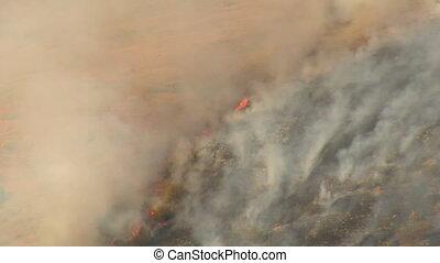 brushfire on hillside