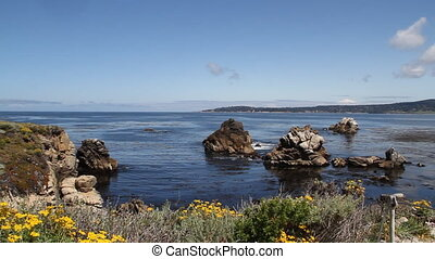 point Lobos State Park California