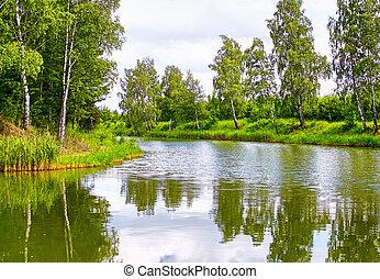 Beautiful spring lake