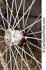 Spokes - Close-up of bicycle spokes
