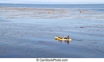 Kayakers paddle in unison and observe water