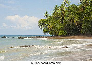 Beautiful Beach Costa Rica