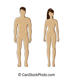 Male and female mannequins - Vector mannequins of man and...