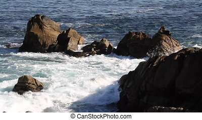 waves break on rocky shoreline