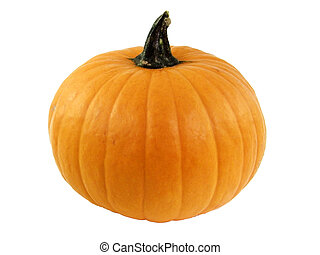 pumpkin - Perfect pumpkin isolated on a white background