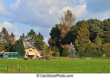 Farmhouse in Holland