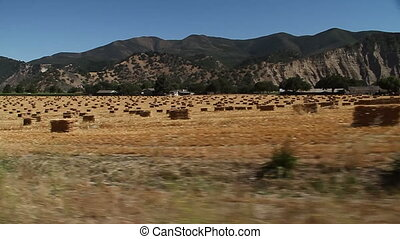 driving by field with hay bales