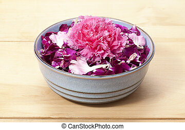 pink carnation with flower petals