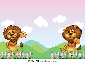 Two lions - Illustration of two lions in the farm