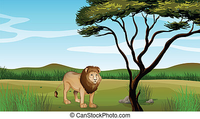 A lion - Illustration of a lion on a mountain scenery
