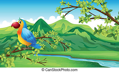 A parrot near the riverbank - Illustration of a parrot near...