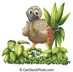 An emu hiding - Illustration of an emu hiding in the garden...