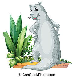 An otter - Illustration of an otter on a white background