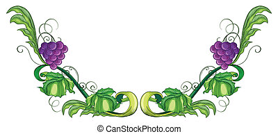 A grape vine - Illustration of a grape vine on a white...