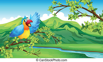 A bird on a branch of a tree