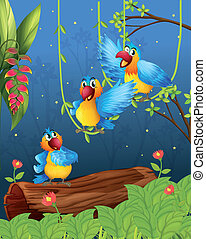Three colorful parrots - Illustration of three colorful...
