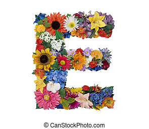Flower Alphabet - E - Letter E made of flowers isolated on...