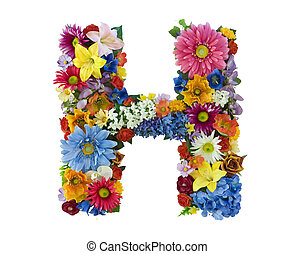 Flower Alphabet - H - Letter H made of flowers isolated on...