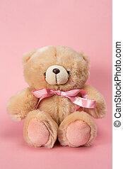 teddy, oso, rosa, cinta