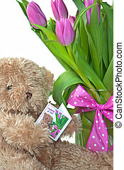 teddy bear with pink tulips - Teddy bear reading a thinking...
