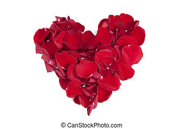 rose petals - Heart shape made out of rose petals