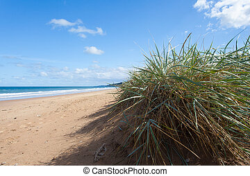 beach sand and dune in normandy