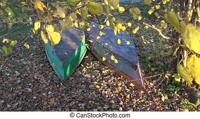 two boats on autumn leaves