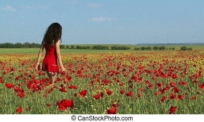 Woman in a poppy field - Beautiful woman walking across a...