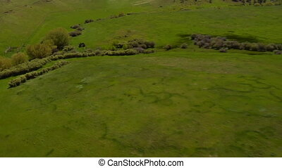 Aerial shot of green, grassy valley