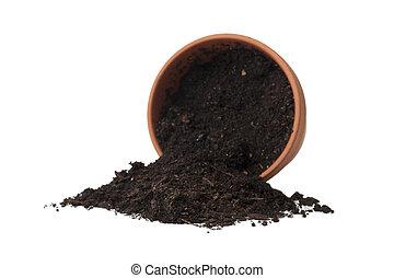 spilled soil in the flower pot