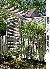 White trellis in a garden - White trellis and fence with...