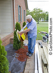 Landscaper planting trees - Handy man adding trees to...