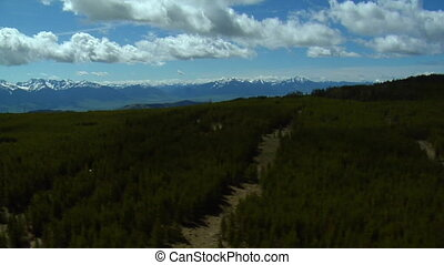 Aerial shot of Montana pine forests and distant mountains