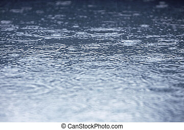 Rain - rain drops in a puddle creating ripples
