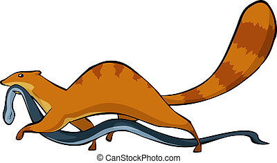 Mongoose with a snake in his mouth vector illustration