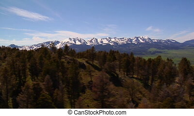Aerial shot of Paradise Valley Montana, pines on grassy...