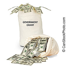 Government grant