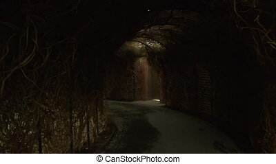 tunnels in the secret Garden