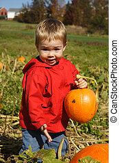 The Perfect Pumpkin - A toddler boy in a red coat, holding a...