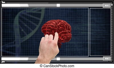 Hand using medical touchscreen interface showing brain...