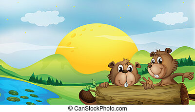 Two beavers at the riverbank - Illustration of two beavers...