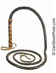 whip - a leather whip