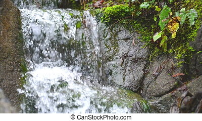 Waterfall cascade streaming down in the green forest