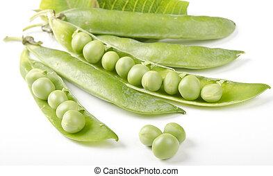 Green Pea over white