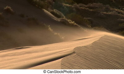 ripples of sand flow on top of sand dune