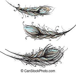 intrincado, decorativo, plumas, Ilustración