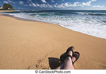 Man Relaxes on Tropical Shoreline